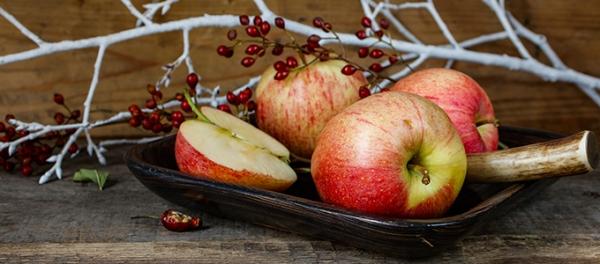 Raccoglitore dicembre gli alberi da frutto resistenti al for Piante da frutto che resistono al freddo